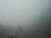 100826_10_Noby_fog2.jpg