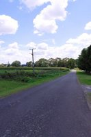 110131_1_Rolly_CountryRoad.jpg