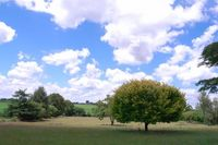 110131_2_Rolly_Farm.jpg