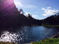 141103_01_Rin_NZ.JPG