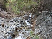 20101101_4_Noby_creek.jpg