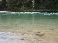 20101118_7_river.jpg