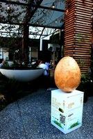20140417_01_Rin_egg.JPG
