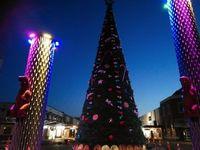 20191202_ヒロミ_1_クリスマスツリー.jpg